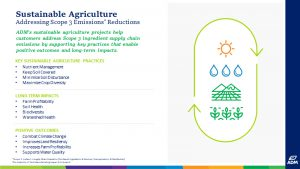 Scope 3 - Sustainable Agriculture